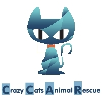 Crazy Cats Animal Rescue