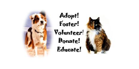 Stover Animal Rescue