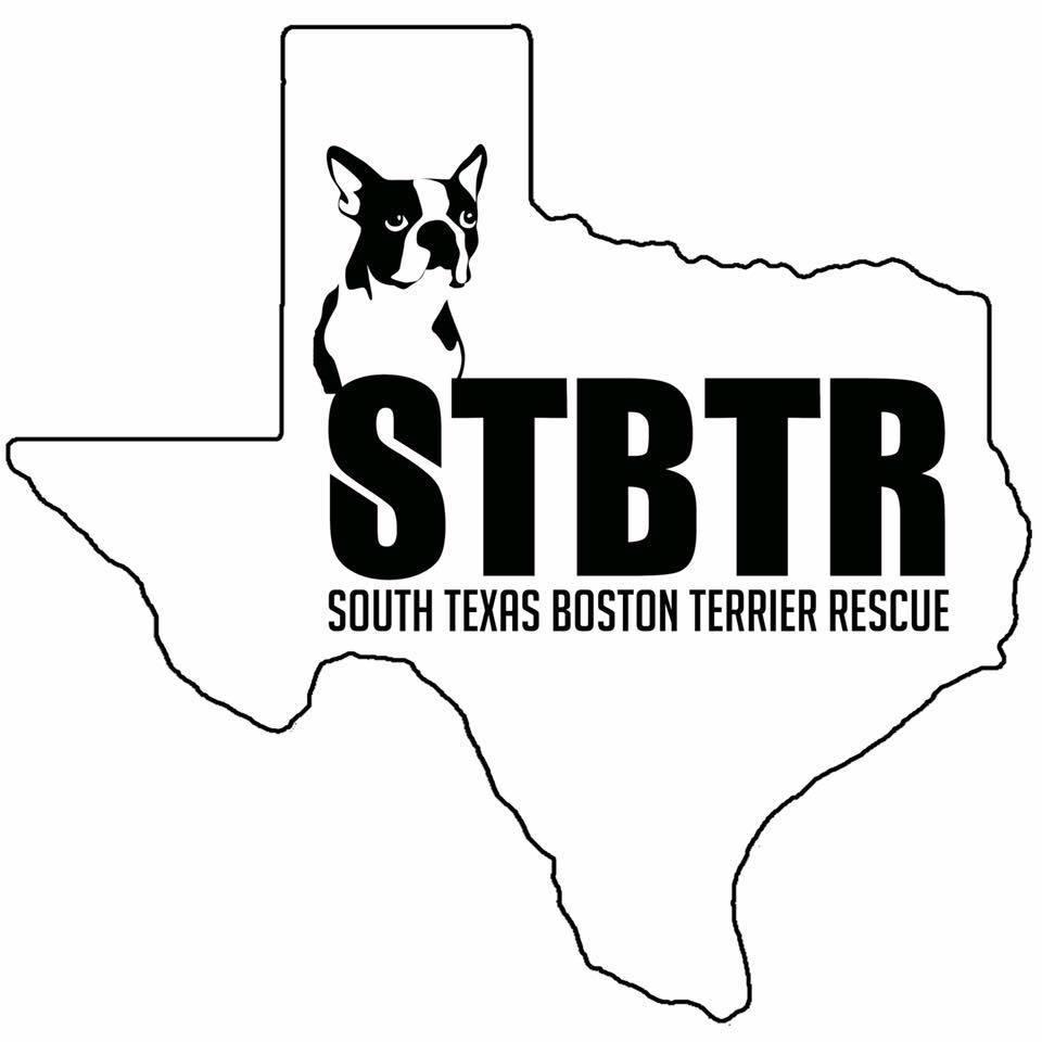 South Texas Boston Terrier Rescue