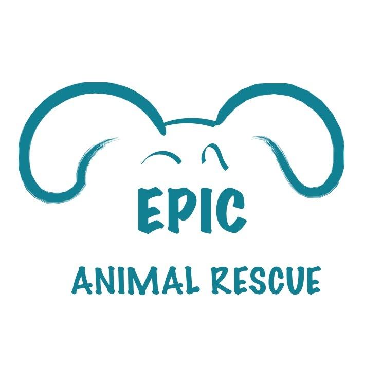 Epic Animal Rescue
