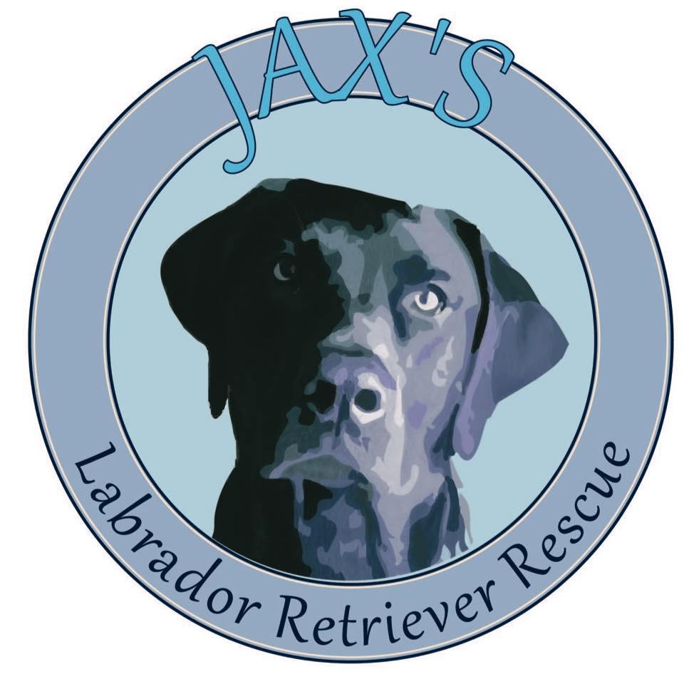 Pets for Adoption at Jax's Labrador Retriever Rescue, in