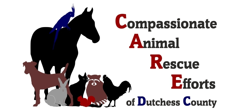 Compassionate Animal Rescue of Dutchess County