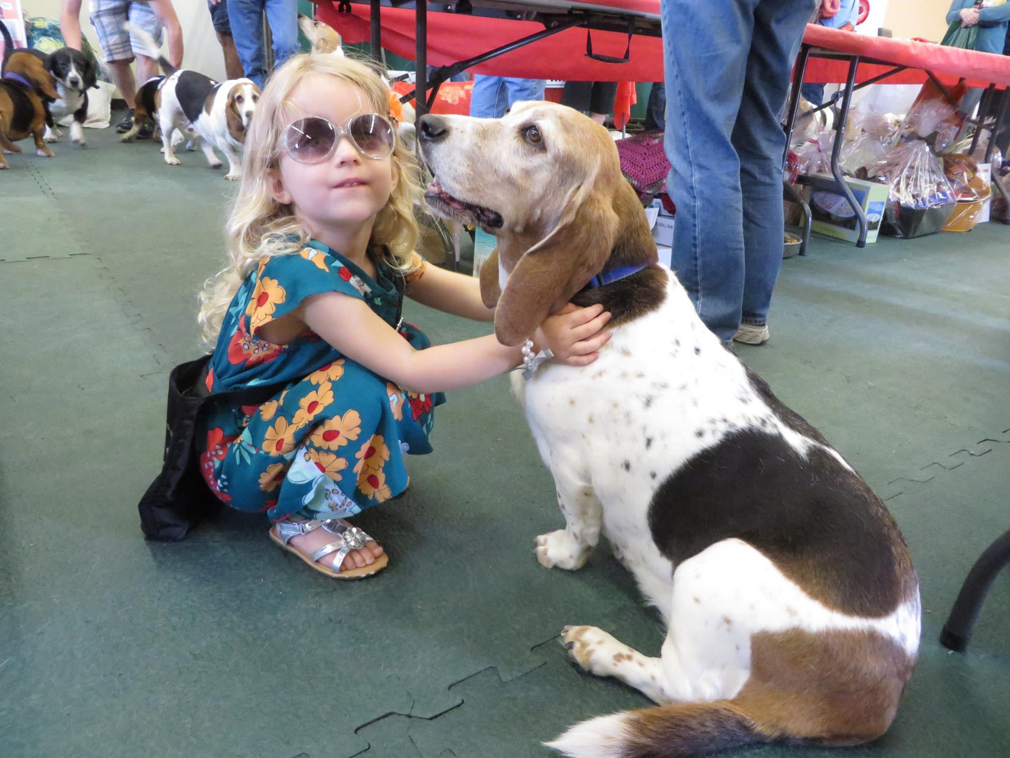 Basset Hounds make good family pets