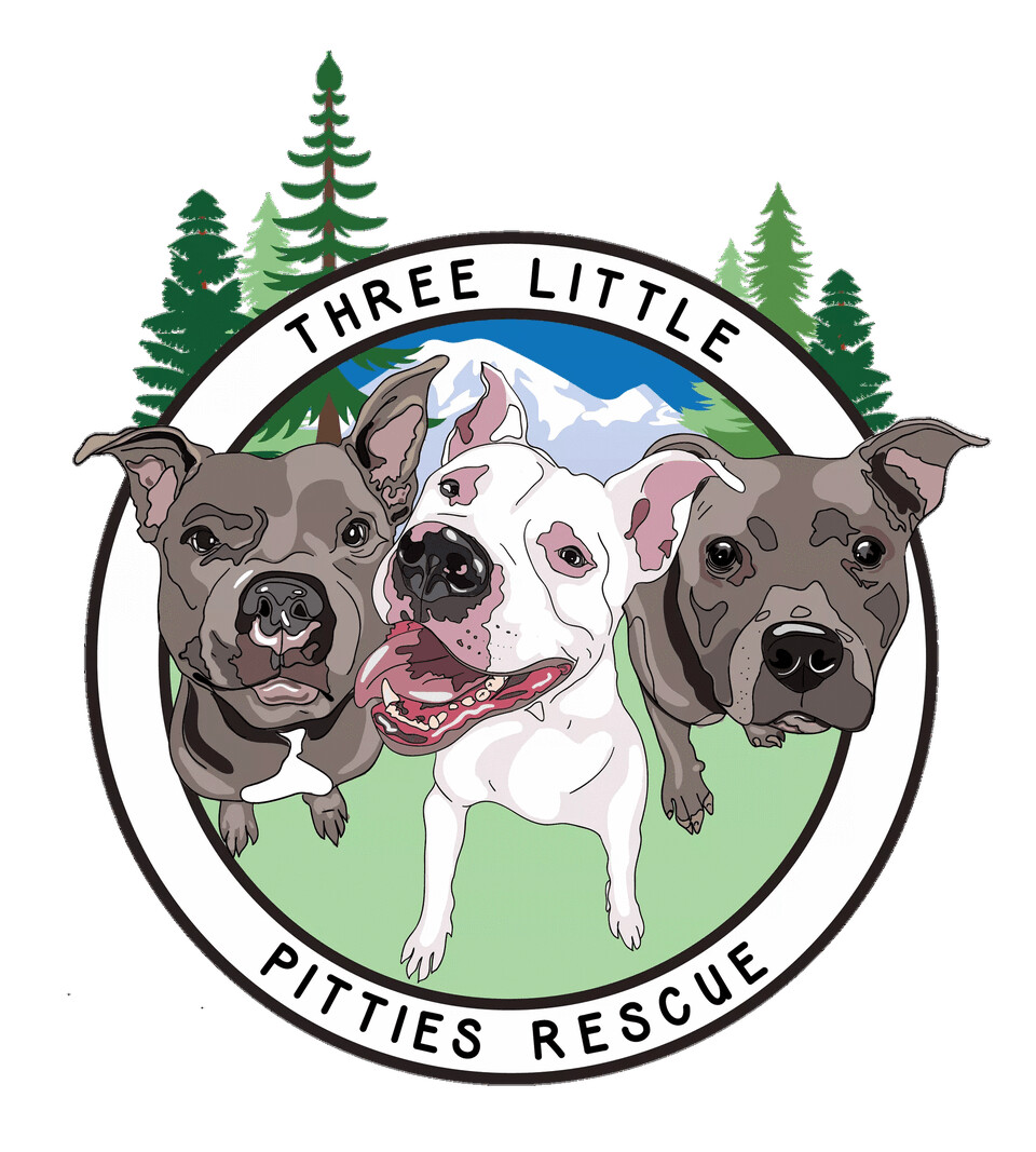 Three Little Pitties Rescue