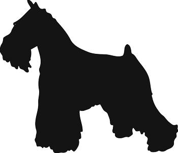 Pet Profile Rescue