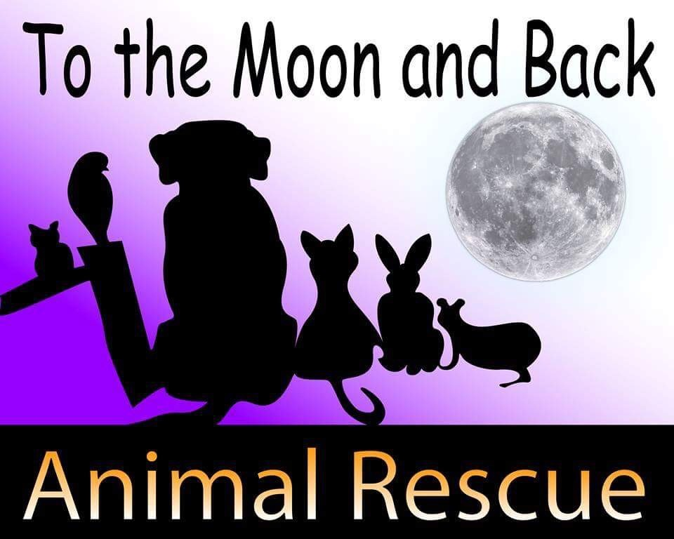 To the Moon and Back Animal Rescue