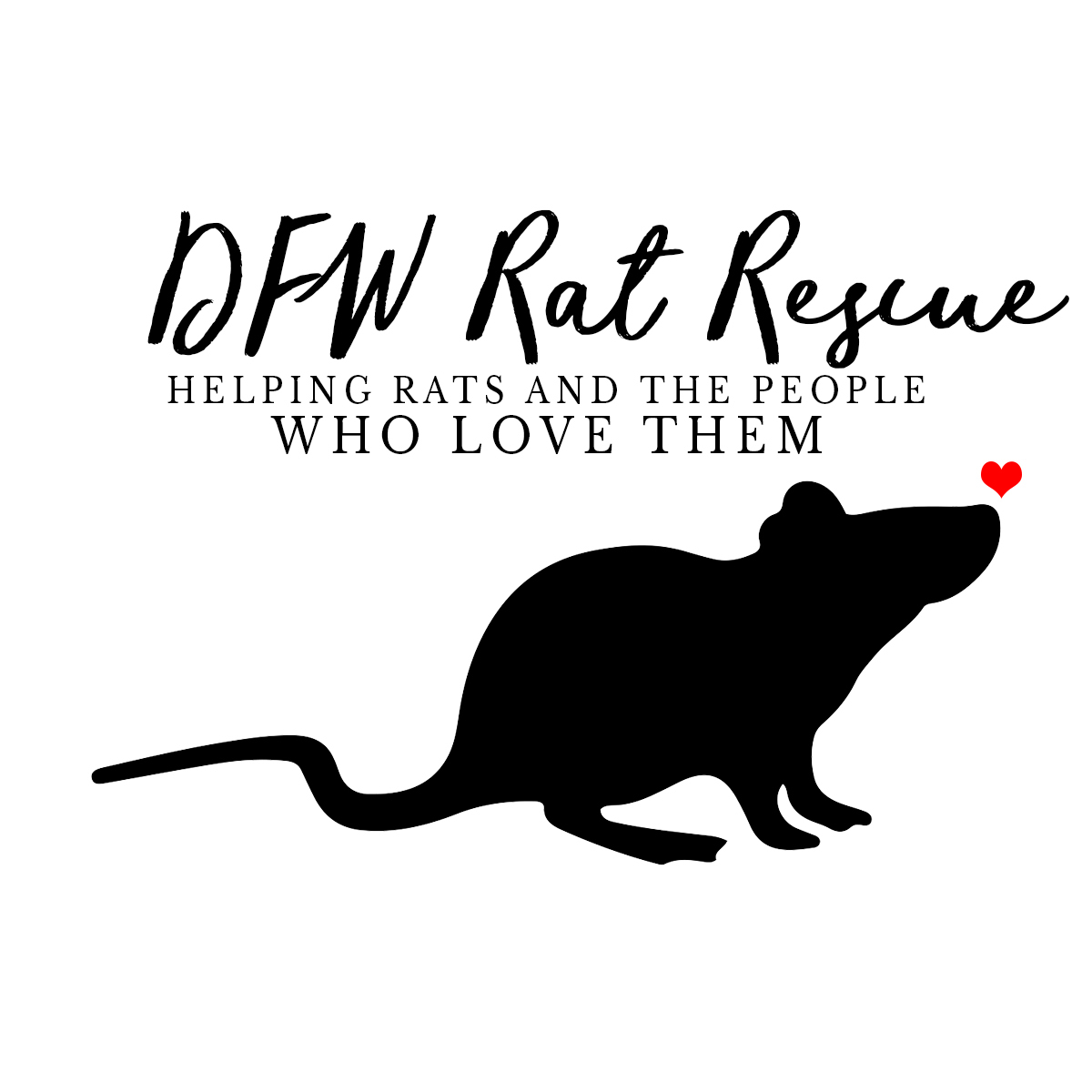 DFW Rat Rescue