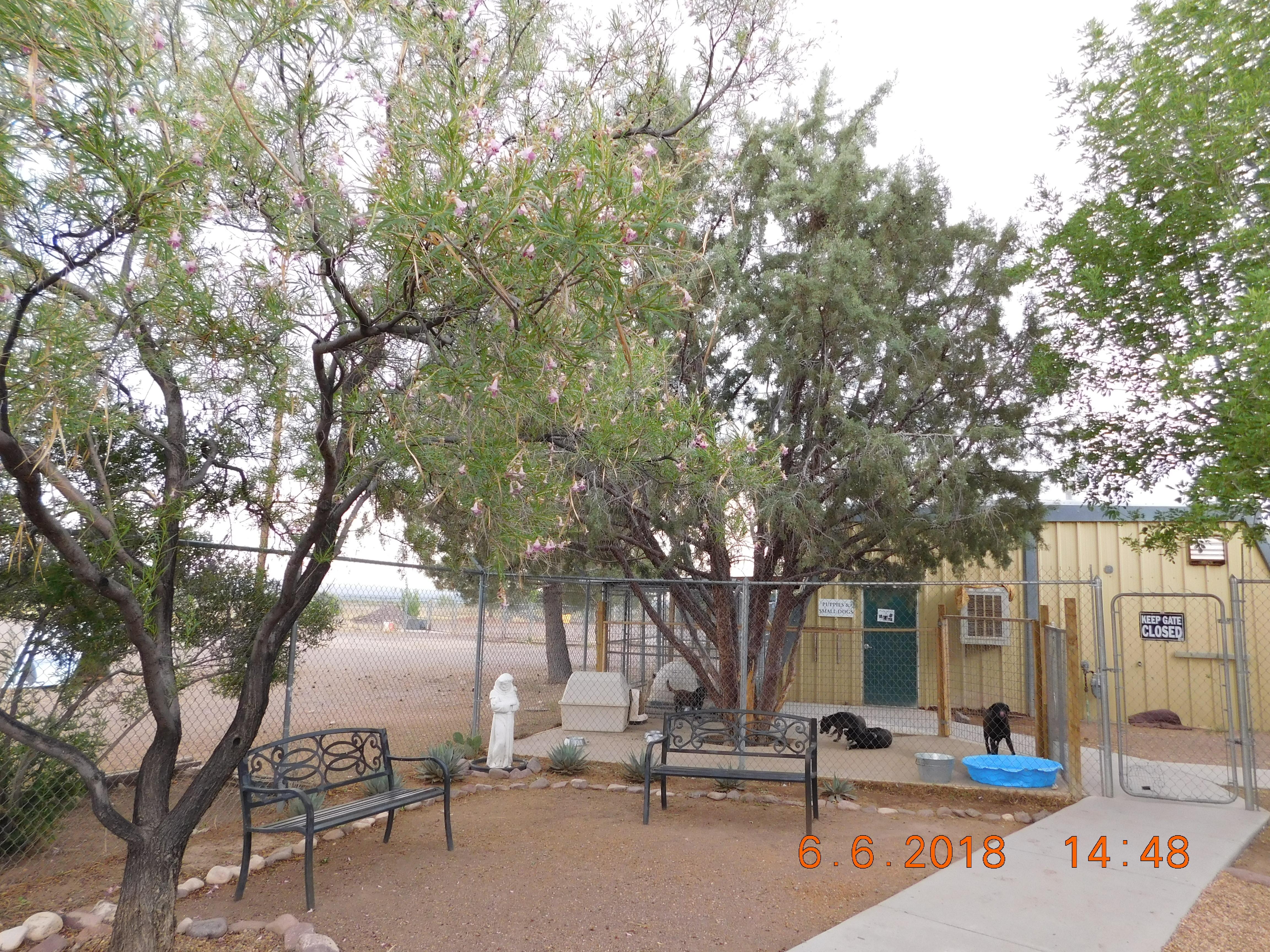 Socorro Shelter Visiting Areas