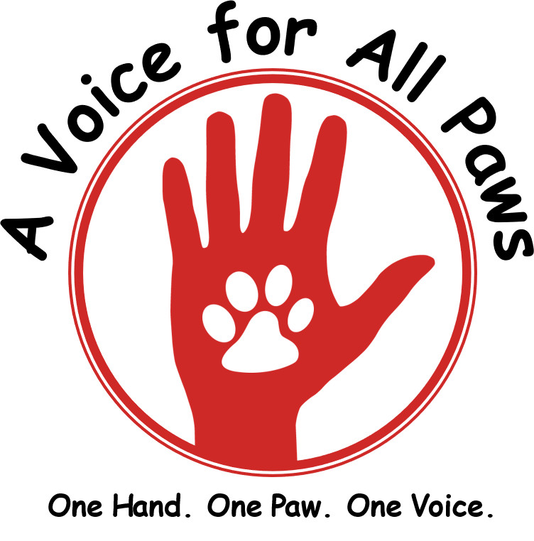 "A Voice for All Paws, an ""all paw"" rescue!"