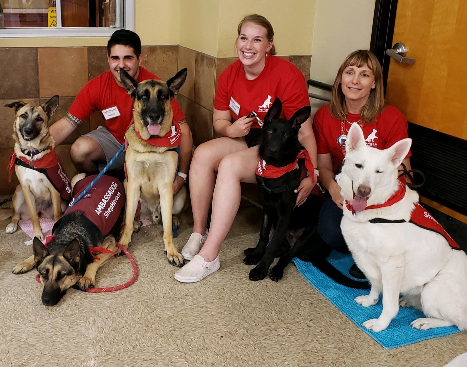 Petsmart Adoption Day San Jose