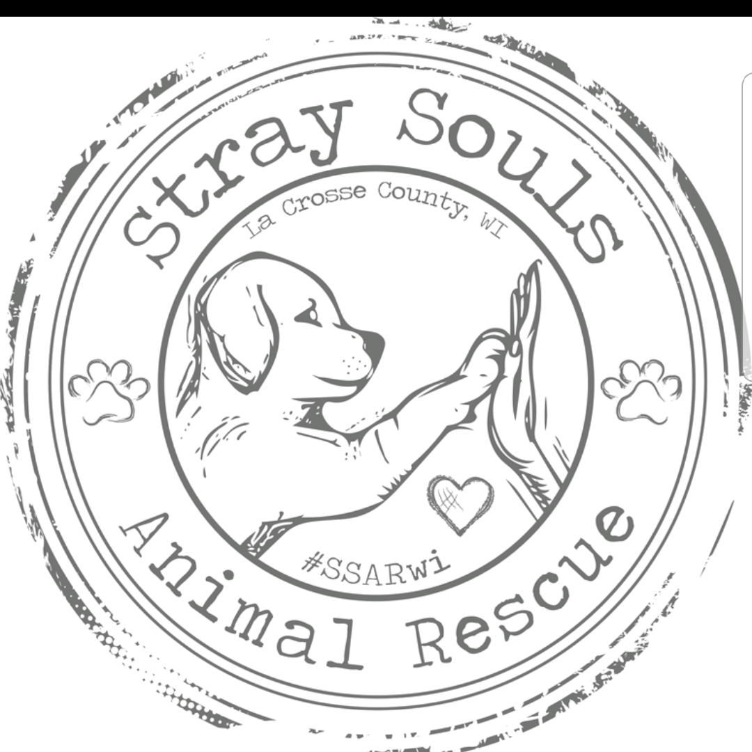 Stray Souls Animal Rescue