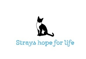 Strays Hope for Life