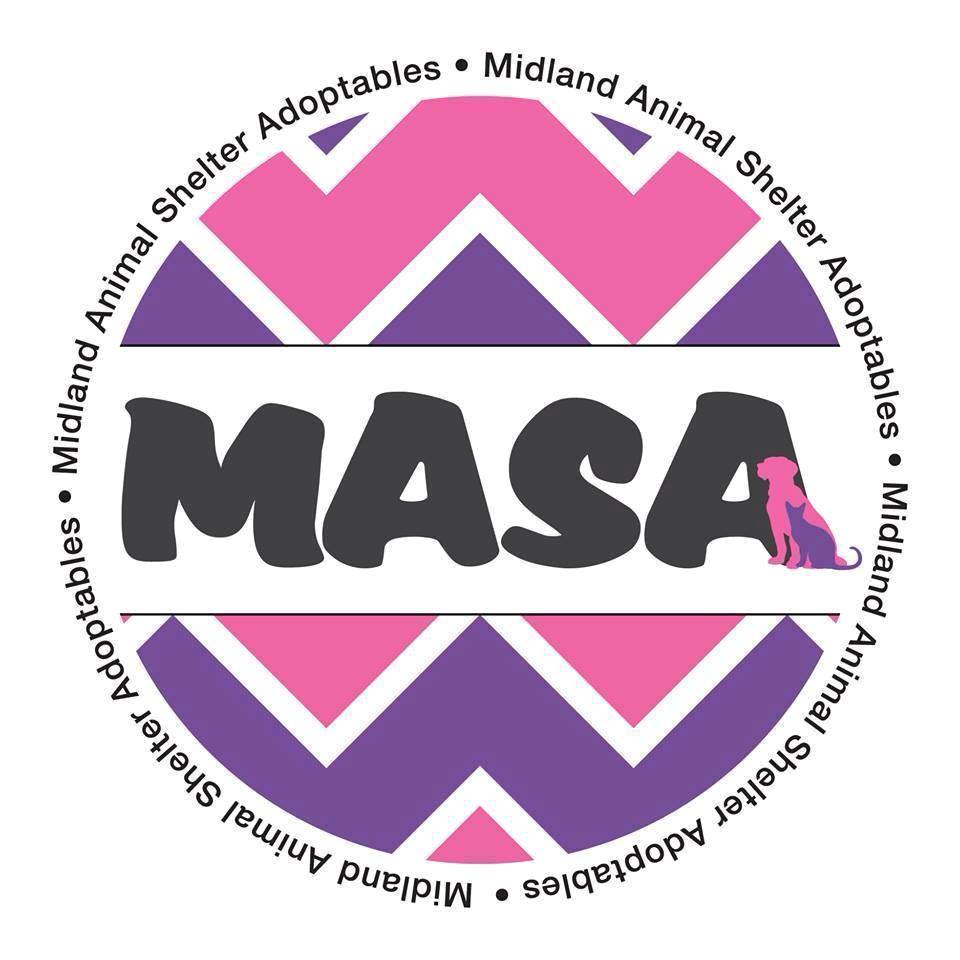 MASA Rescue