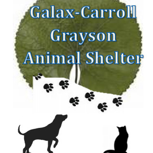 Galax Carroll Grayson Animal Shelter