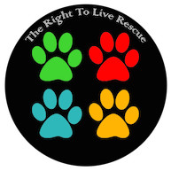 They Have The Right to live Rescue