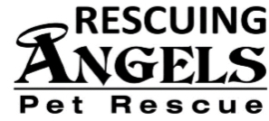 Rescuing Angels Rescue