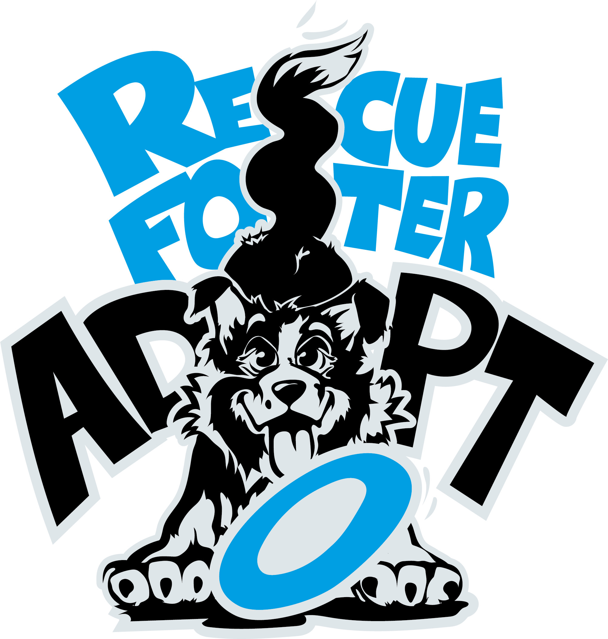 Border Collie Save and Rescue