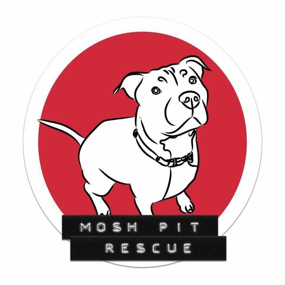 Mosh Pit Rescue