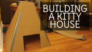 Building A Kitty House