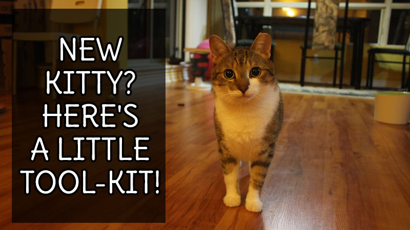 New Kitty? Here's a little tool-kit!