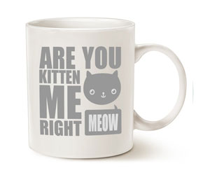are-you-kitten-me-mug