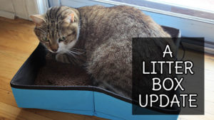 a-litter-box-update