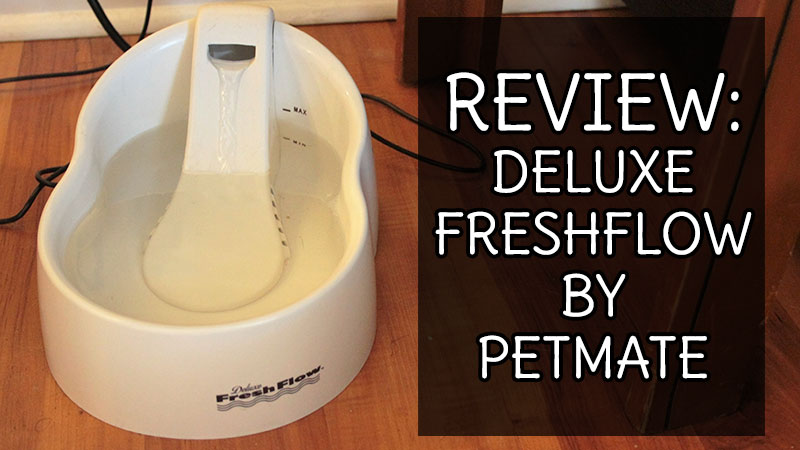 Review: Deluxe Fresh Flow by Petmate