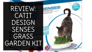 review-catit-senses-garden-kit