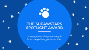 SUPAWSTARS AWARD! February 2018