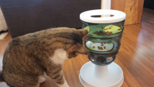 REVIEW: Catit Senses 2.0 Food Tree