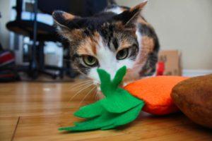 carrot-breadstick-catnip-toy-kalista