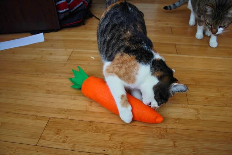 carrot-breadstick-catnip-toy-kalista-beau
