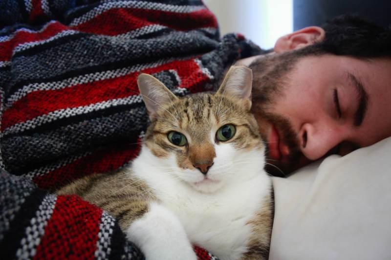 beau-cuddling-bed-me-johnny