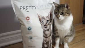REVIEW: PrettyLitter the Color-Changing Health Monitoring Cat Litter