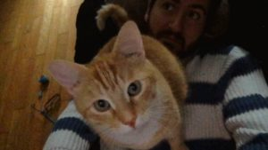 Stevie the Cat Cuddles For 10-Minutes (Cute Cat Video)