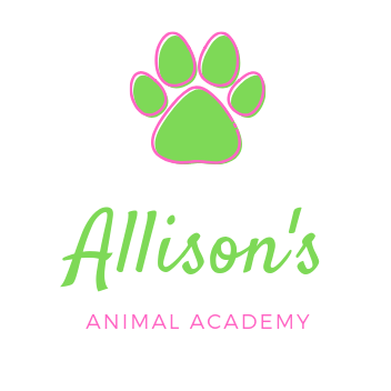 Allison's Animal Academy