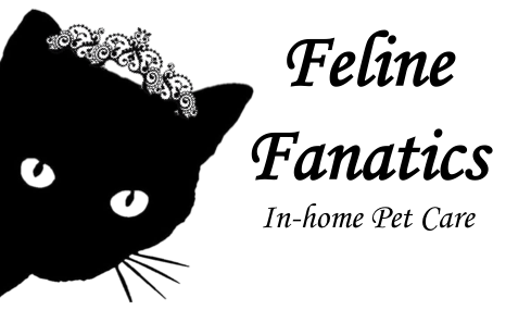 Feline Fanatics In-home Pet Care
