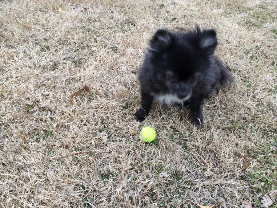 Margarita playing ball.