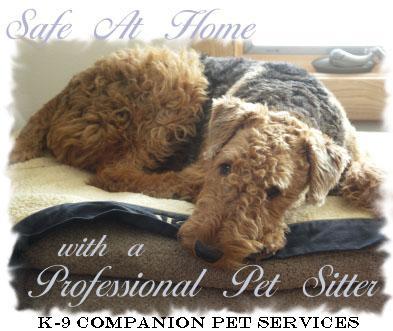 K-9 Companion Pet Services