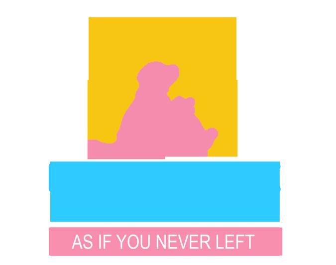 Like Home Pet Care, LLC