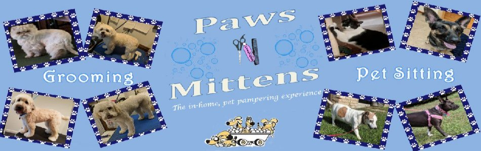 Paws 'N Mittens