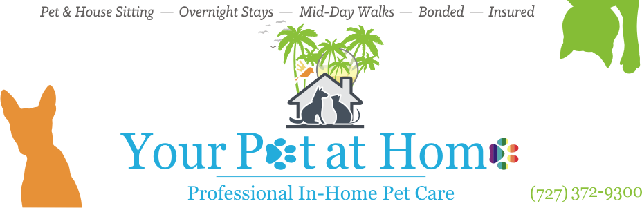 Your Pet At Home by Who Let My Dogs Out?, LLC