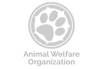Animals Called to Service