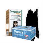 Medicamentos para cachorros