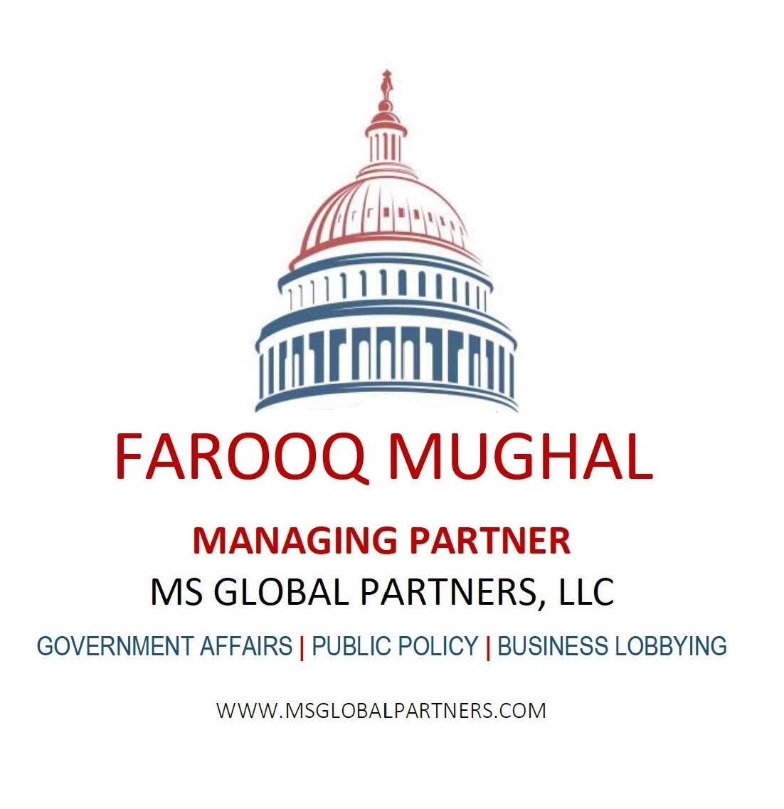 MS Global Partners, LLC - Government Affairs  Logo