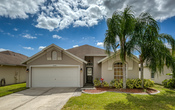 10239 oasis palm dr 1