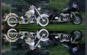 Screen twin hogswide reflectionswide
