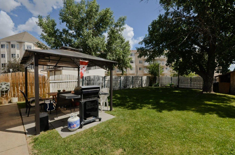 34. backyard 1