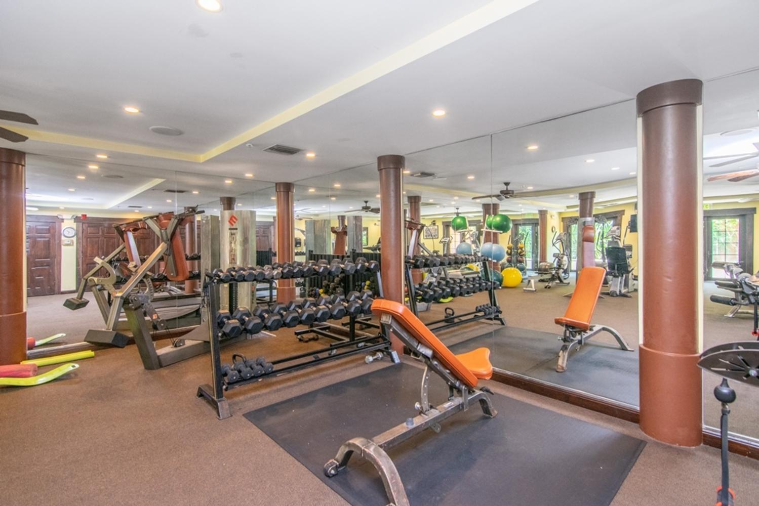 41 gym