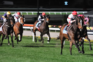 Harlem Into Caulfield Cup After Naturalism Stakes Win